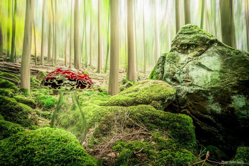 Stone Kong & the Magic Mushroom