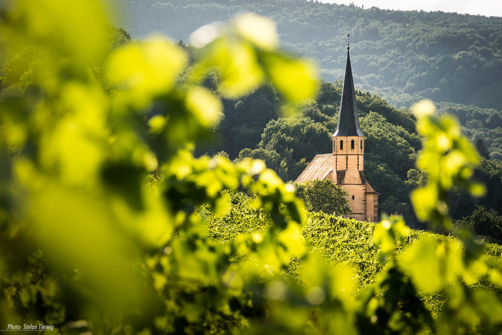Église Saint-André at Andlau (Alsace)