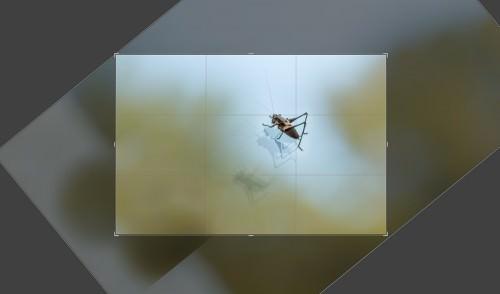 Jiminy on Ice (MakingOf) 01