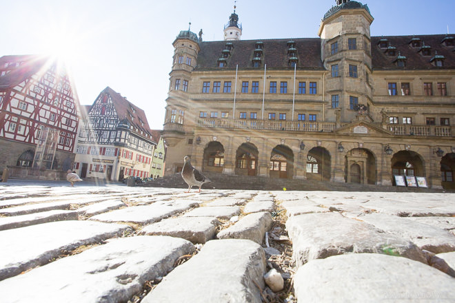 Pigeons invasion (Marketplace, Rothenburg ob der Tauber) (MakingOf) 01