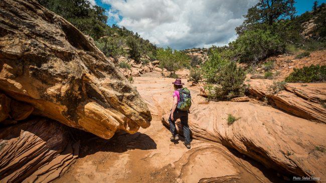 Wanderweg zum House of Fire durch den Mule Canyon