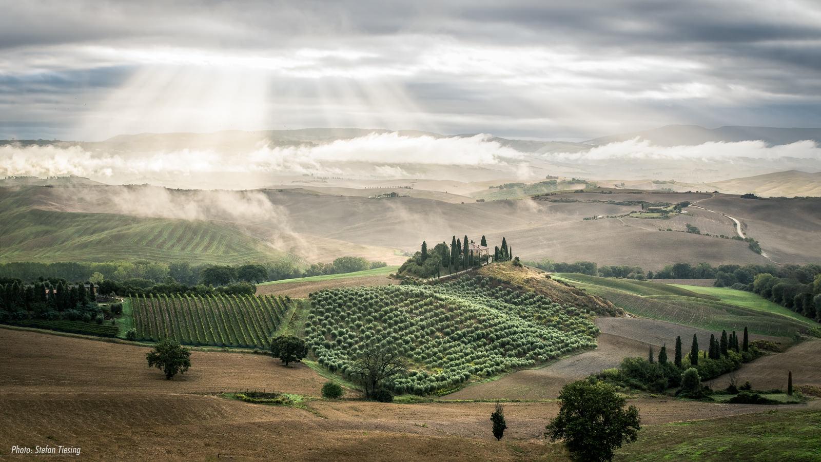 Dream of Tuscany (oder wie ich in der Toskana auf Nebel wartete)