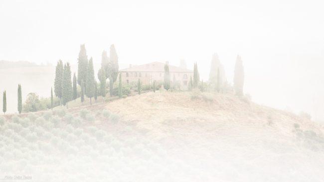 Verschwindet fast völlig im Nebel: Die Podere Belvedere in der Nähe von San Quirico d'Orcia