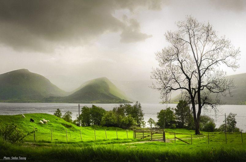 Norwegian Weather