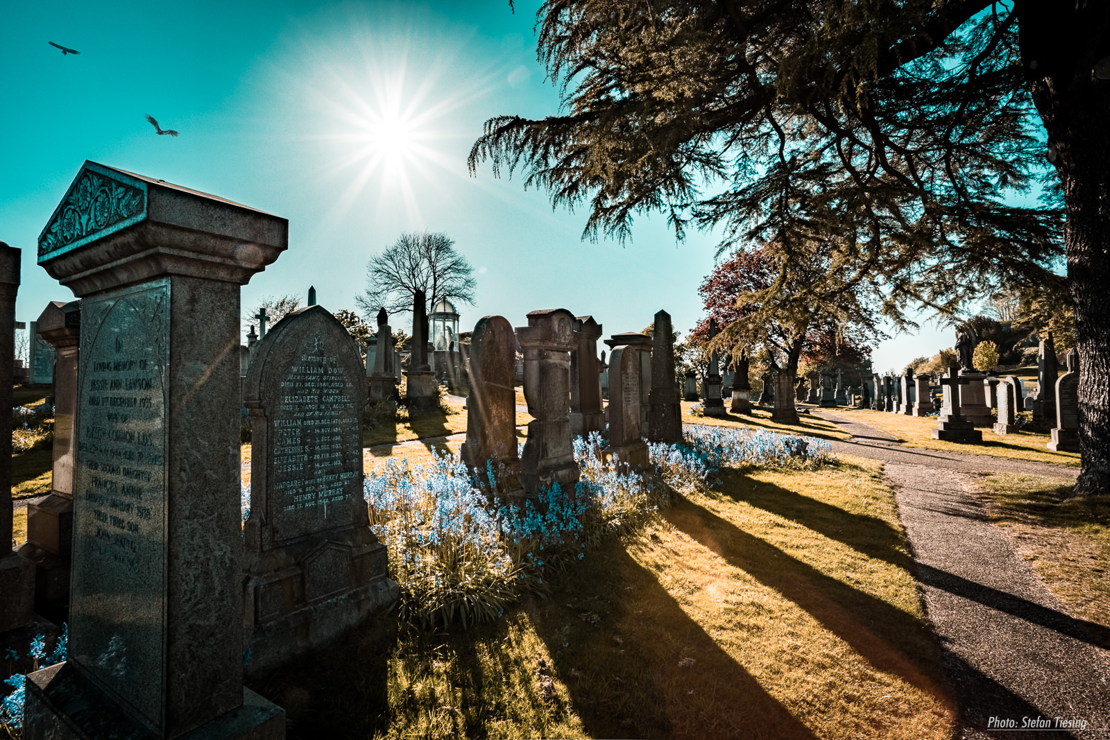 Sunset at Old Town Cemetery Stirling
