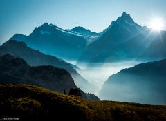 Fog over Grindelwald