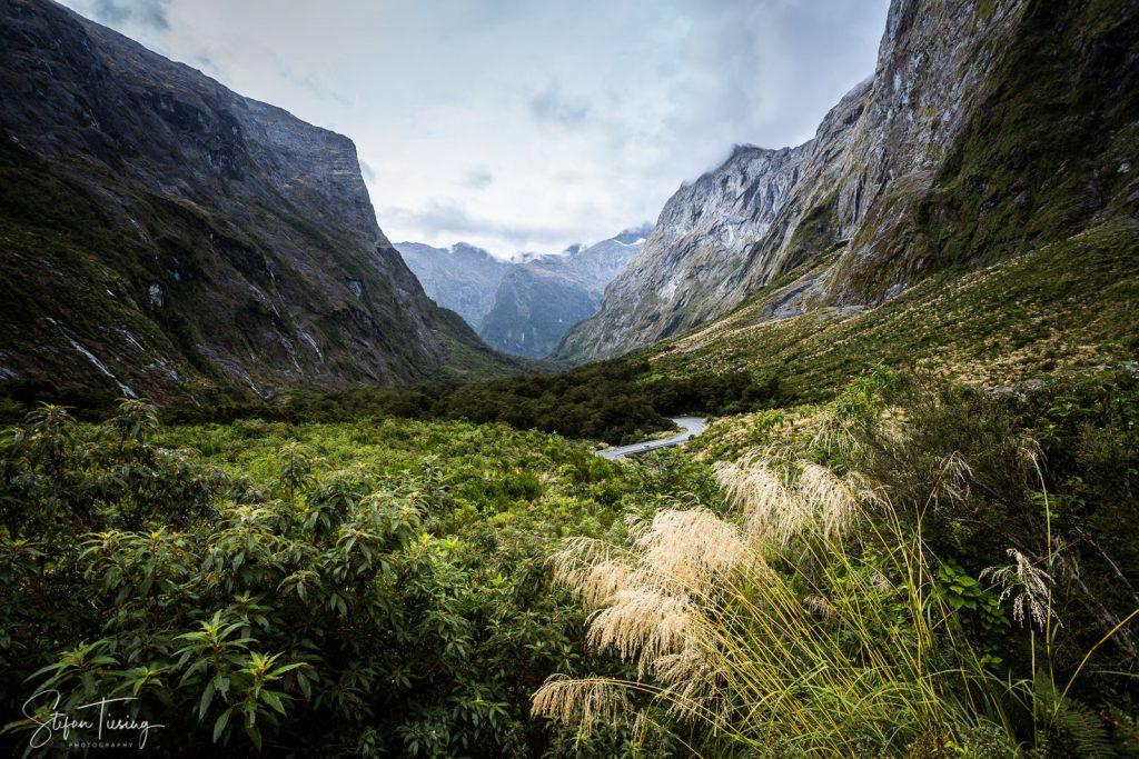In Naturschutzgebieten in Neuseeland sind Drohnen verboten