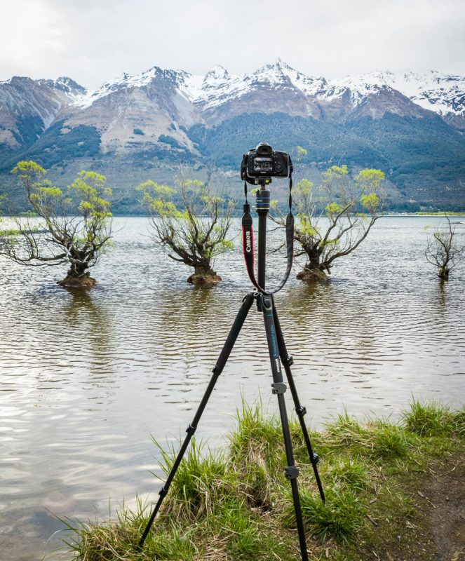 Eine Kamera fotografiert die Willow Trees of Glenorchy
