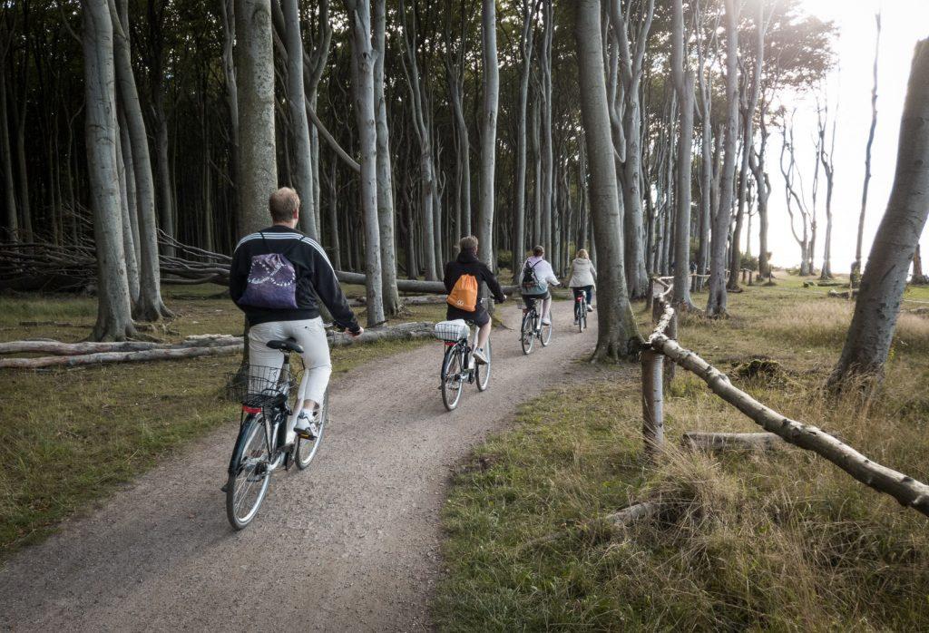 Fahradfahrer im Gespensterwald bei Nienhagen