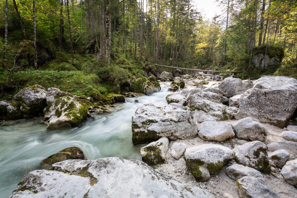 Ramsauer Ache im Zauberwald