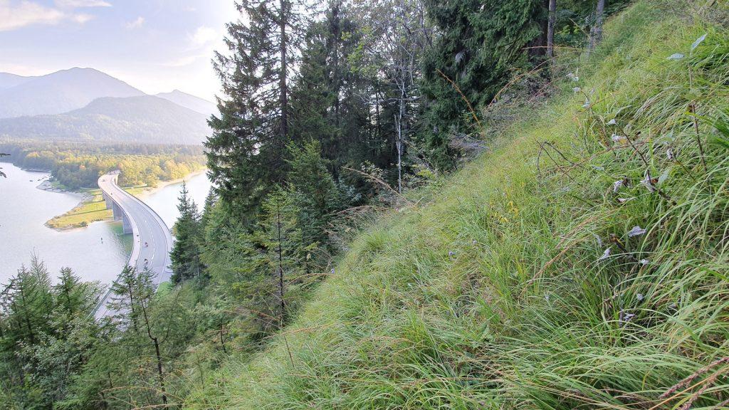 Ausblick auf die Faller-Klamm-Brücke