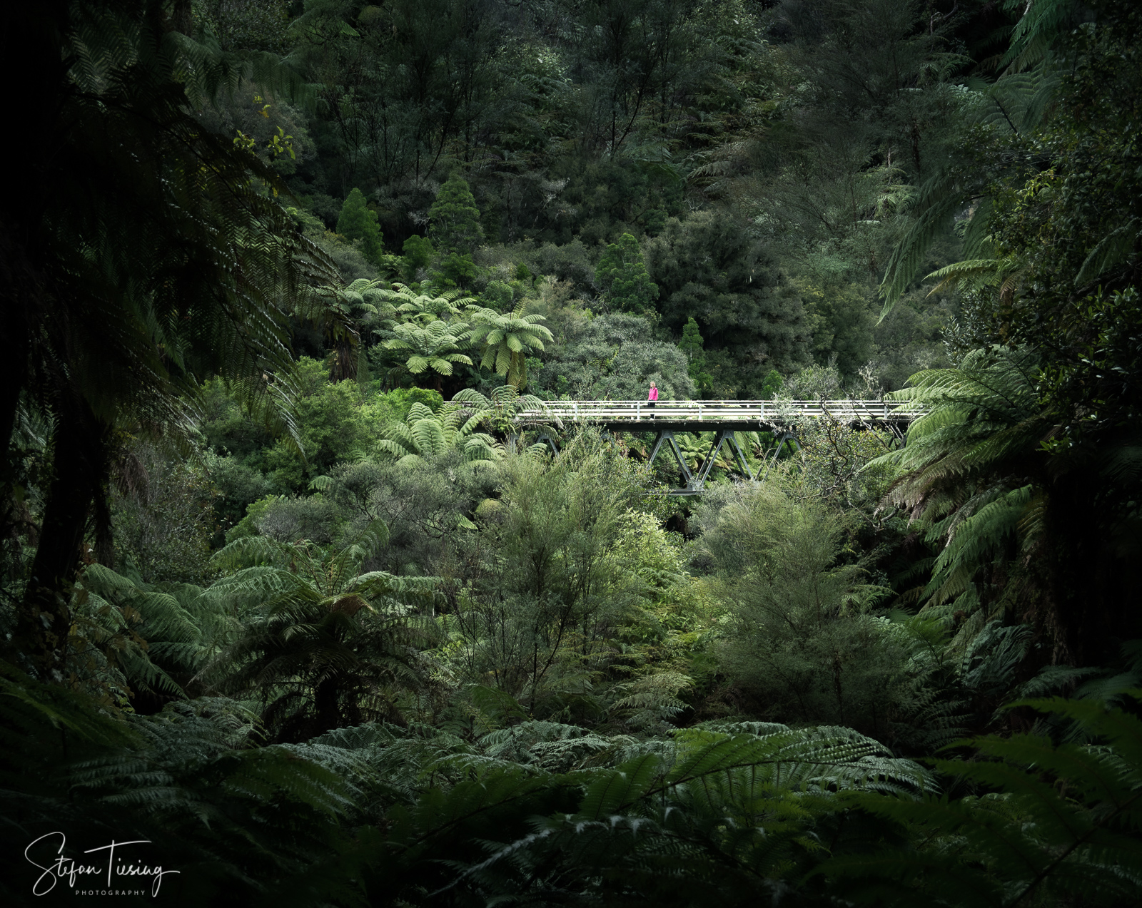 Tangarakau Bridge in Neuseeland