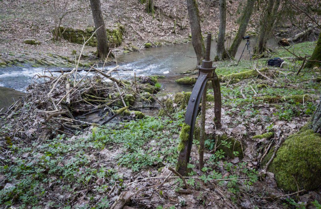 Rinschbach Stauwehr