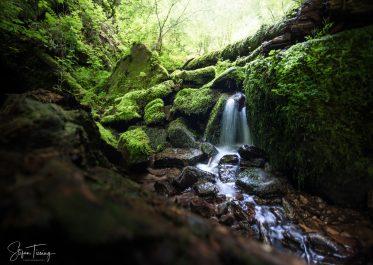 Kleiner Wasserfall in der Wolfsschlucht bei Zwingenberg