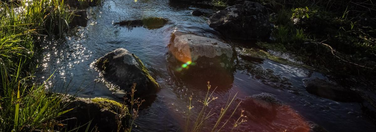 Steine im Eisgraben